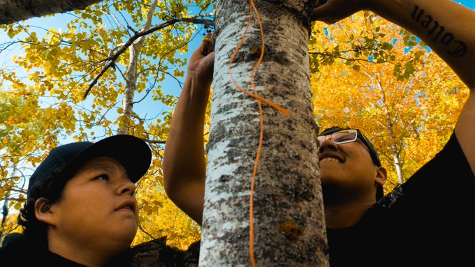 Two youth tying a rope to a tree