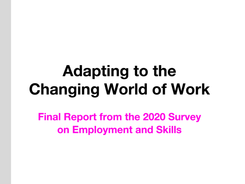 Informative image title and sub-title that says: Adapting to the changing world of work. Final Report From the 2020 Survey on Employment and Skills