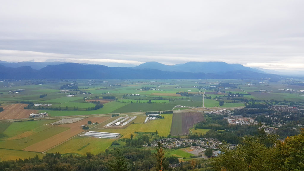 Image of Fraser Valley Farmland.
